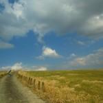 万年山の風景2